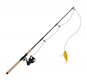 Affordable fishing rods
